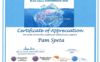 Brian Injury Conference 2020